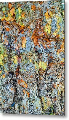 Tree Bark. Textures. Metal Print by Andy Za