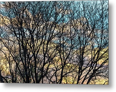 Metal Print featuring the photograph Tree Branches And Colorful Clouds by James BO Insogna