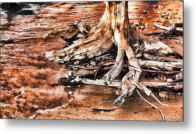 Tree By The Ocean 1 Metal Print