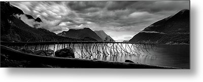 Tree Fall At Alouette Lake Metal Print