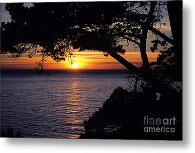 Tree Framing Seascape Sunset Metal Print by Ali ONeal - Printscapes