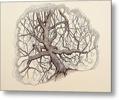 Metal Print featuring the drawing Tree In Winter II by Kerry Beverly