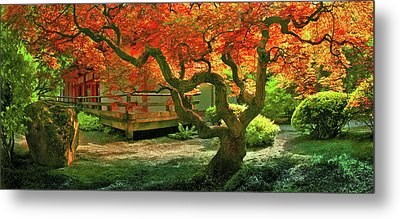 Tree, Japanese Garden Metal Print
