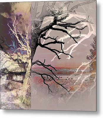 Tree Layers 8 Metal Print