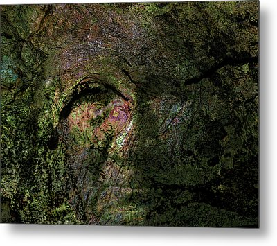 Metal Print featuring the photograph Tree Memories # 18 by Ed Hall