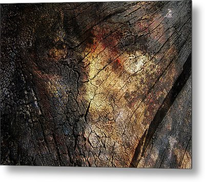 Metal Print featuring the photograph Tree Memories # 21 by Ed Hall