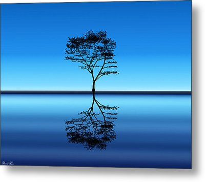 Metal Print featuring the photograph Tree Of Life by Bernd Hau