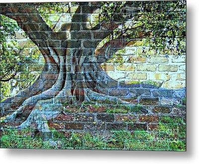 Tree On A Wall Metal Print