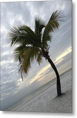 Metal Print featuring the photograph Tree Pose by Jean Marie Maggi