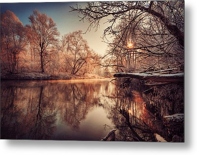 Tree Reflection In River Metal Print by Philippe Sainte-Laudy Photography