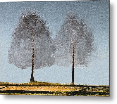 Tree Reflections Metal Print by Rosalie Scanlon