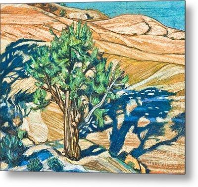Tree Shadow On Slickrock - Lwtss Metal Print by Lewis Williams OFS