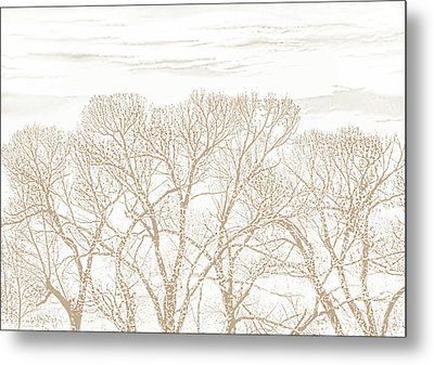 Metal Print featuring the photograph Trees Silhouette Brown by Jennie Marie Schell