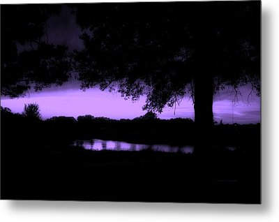 Tree Silhouette By The Pond Purple Metal Print by Thomas Woolworth