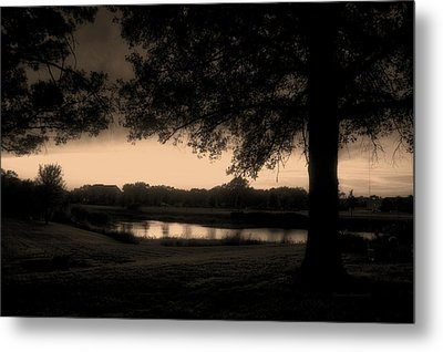 Tree Silhouette By The Pond Sepia Metal Print by Thomas Woolworth