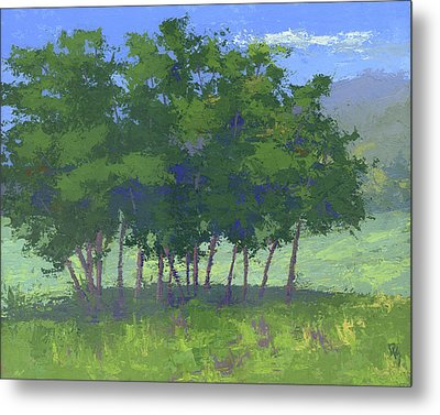 Tree Stand Metal Print by David King