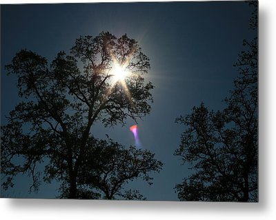 Tree Star Metal Print by Joshua Sunday