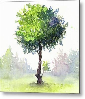 Tree Study Metal Print by Taylan Apukovska