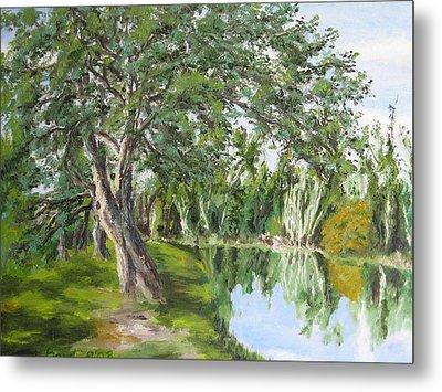 Tree Tops Park Metal Print by Lisa Boyd