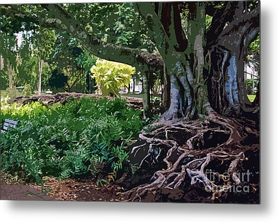 Tree With Roots Metal Print