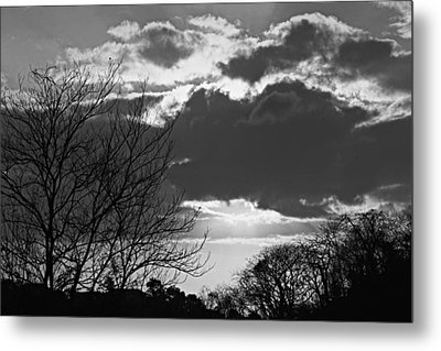 Trees And Clouds-st Lucia Metal Print