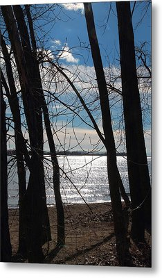 Metal Print featuring the photograph Trees And Lake Reflections by Valentino Visentini