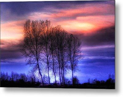 Trees And Twilight Metal Print