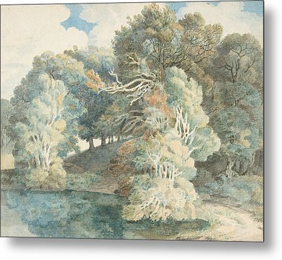 Trees By The Lake, Peamore Park, Near Exeter, Devon Metal Print