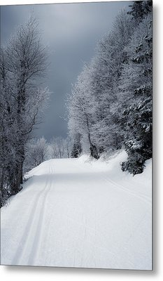 Trees Hills And Snow Metal Print by Miguel Winterpacht