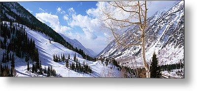 Trees In Snow, Snowbird Ski Resort Metal Print