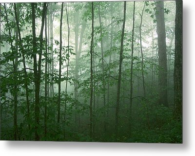 Metal Print featuring the photograph Trees In The Mist by Joye Ardyn Durham