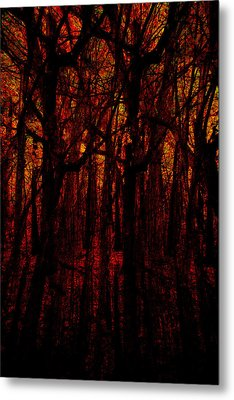 Trees On Fire Metal Print