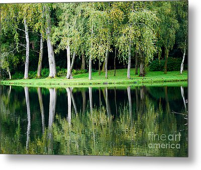 Trees Reflected In Water Metal Print by Colin Rayner