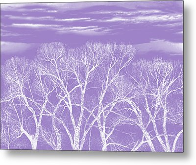 Metal Print featuring the photograph Trees Silhouette Purple by Jennie Marie Schell