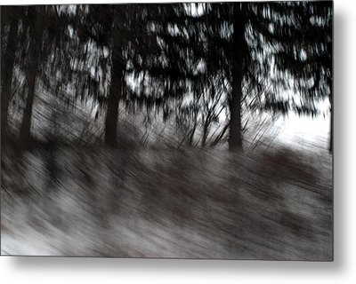 Treescape Metal Print by David Hickey