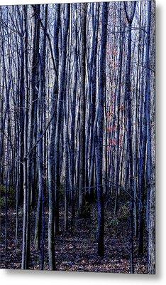 Treez Blue Metal Print