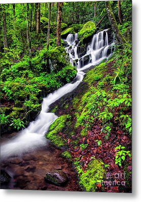 Tremont Area Waterfall Metal Print by Madonna Martin