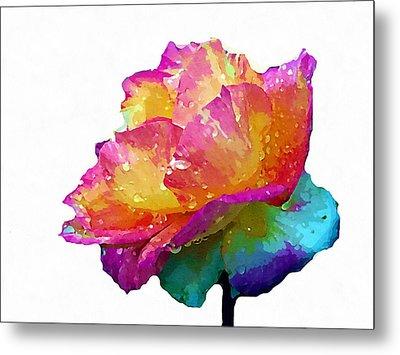 Tri Color Rose Metal Print by Joseph Frank Baraba