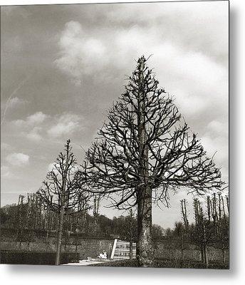 Triangle Trees Metal Print