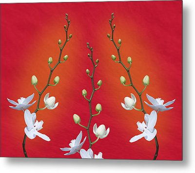 Trifecta Of Orchids Metal Print