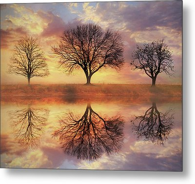 Metal Print featuring the mixed media Trio Of Trees by Lori Deiter