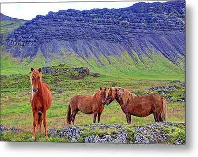 Metal Print featuring the photograph Triple Horses by Scott Mahon