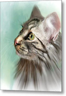 Trixie The Maine Coon Cat Metal Print by Angela Murdock