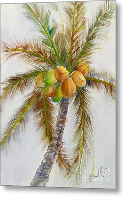 Tropical  Delight Metal Print by Mohamed Hirji
