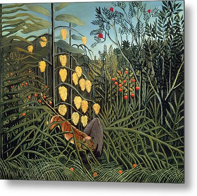 Tropical Forest  Battling Tiger And Buffalo Metal Print by Henri Rousseau