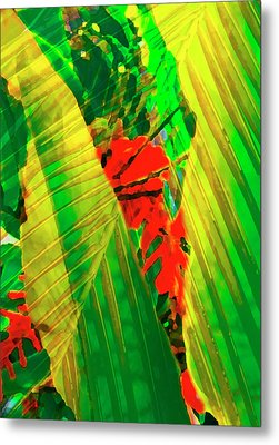 Tropical Fusion Metal Print by Stephen Anderson