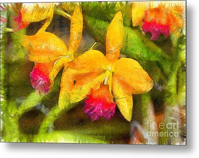 Tropical Orchid Flowers Pencil Metal Print by Edward Fielding
