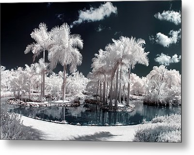 Tropical Paradise Infrared Metal Print by Adam Romanowicz