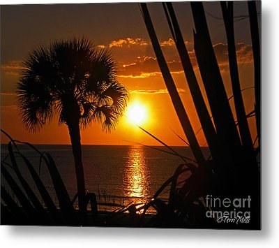 Tropical Sunset Metal Print by Terri Mills