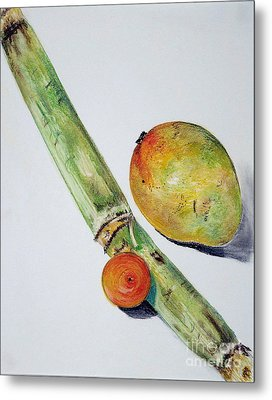Tropical Trio Metal Print by Sheron Petrie